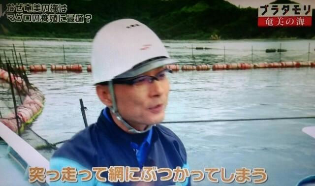 f:id:morifumikirikita319:20170402074825j:image