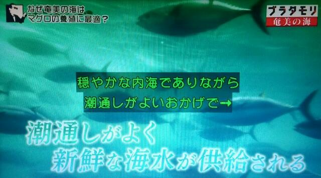 f:id:morifumikirikita319:20170402074859j:image