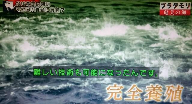 f:id:morifumikirikita319:20170402074936j:image