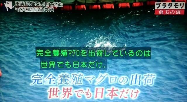 f:id:morifumikirikita319:20170402075034j:image