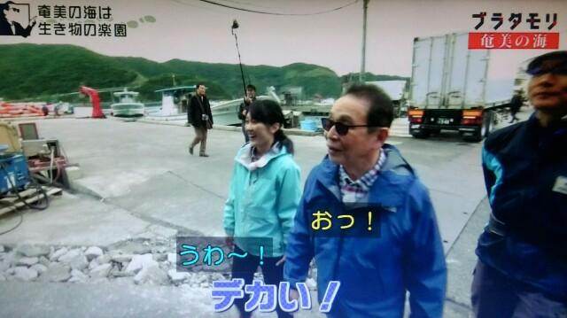 f:id:morifumikirikita319:20170402080512j:image