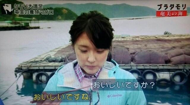 f:id:morifumikirikita319:20170402080712j:image