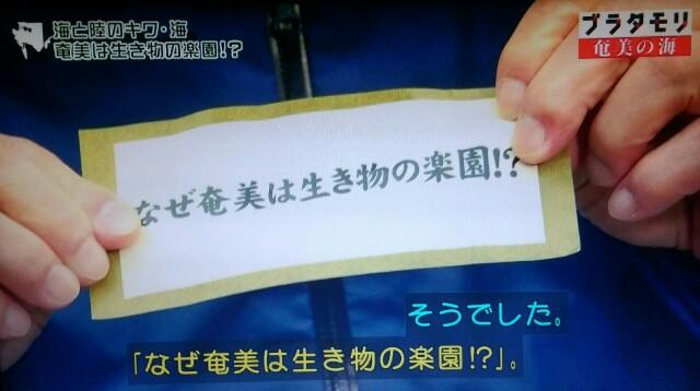 f:id:morifumikirikita319:20170402080835j:image
