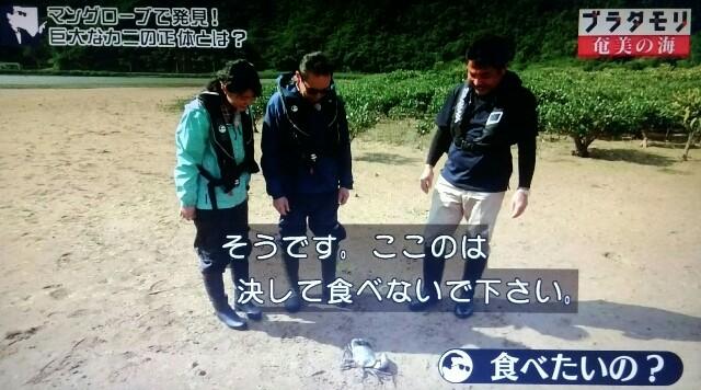 f:id:morifumikirikita319:20170402083427j:image
