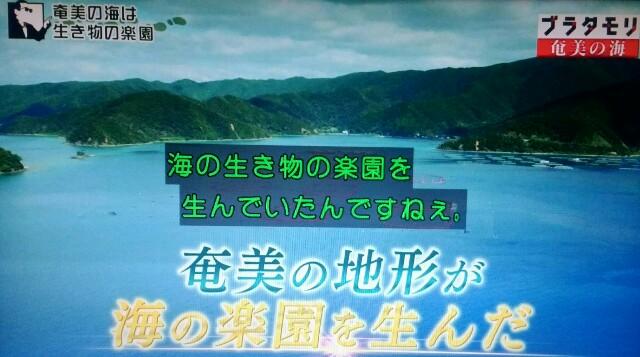 f:id:morifumikirikita319:20170402135456j:image