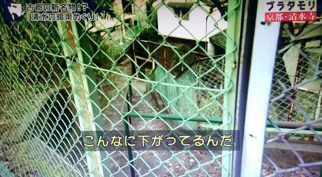 f:id:morifumikirikita319:20170409055139j:image