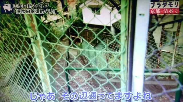 f:id:morifumikirikita319:20170409055159j:image
