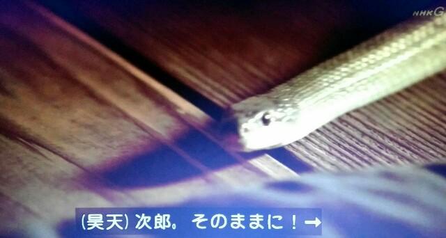 f:id:morifumikirikita319:20170416215739j:image