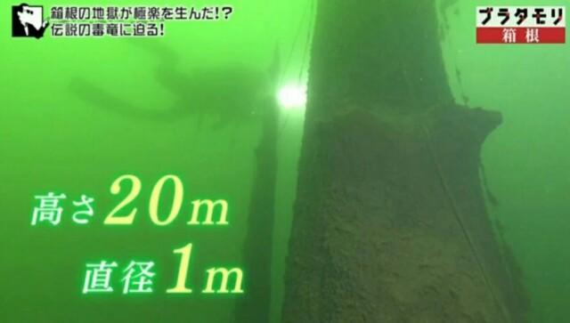 f:id:morifumikirikita319:20170422214702j:image