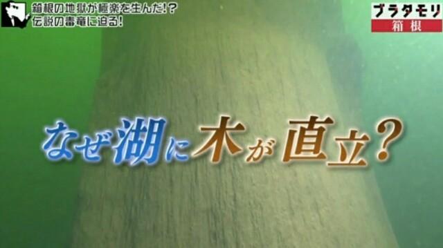 f:id:morifumikirikita319:20170422214745j:image