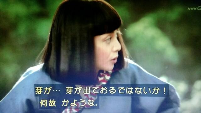 f:id:morifumikirikita319:20170423235427j:image