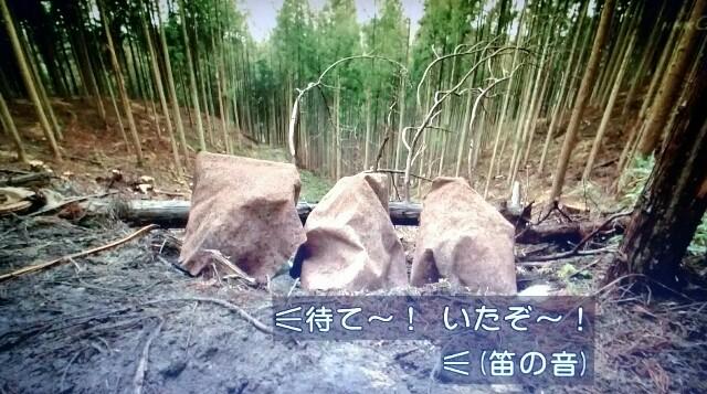 f:id:morifumikirikita319:20170514215855j:image