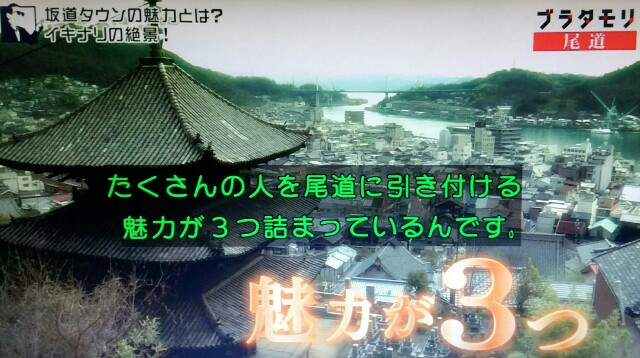f:id:morifumikirikita319:20170520204119j:image