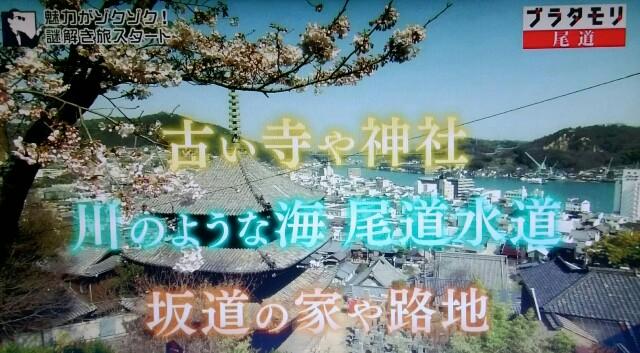 f:id:morifumikirikita319:20170520204131j:image