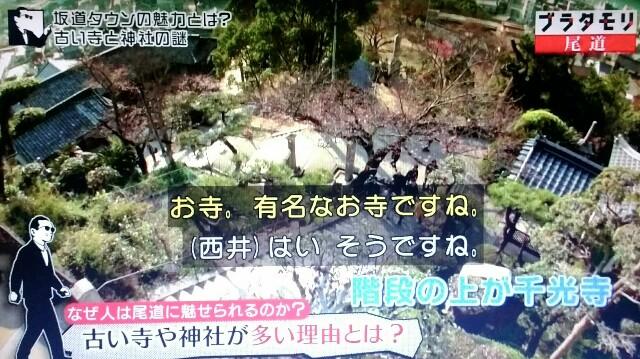 f:id:morifumikirikita319:20170520205321j:image