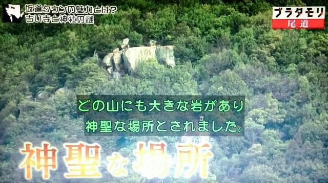 f:id:morifumikirikita319:20170520210741j:image