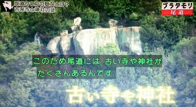 f:id:morifumikirikita319:20170520210753j:image