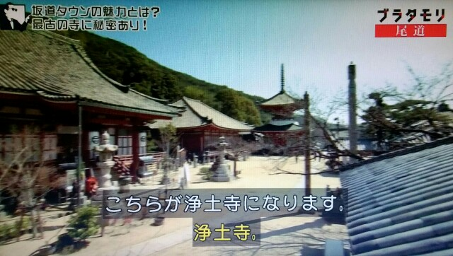 f:id:morifumikirikita319:20170520211759j:image