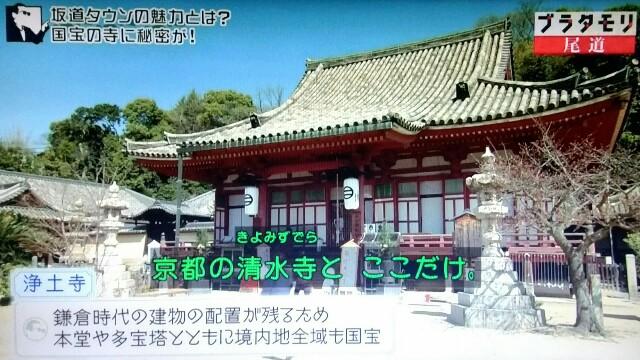 f:id:morifumikirikita319:20170520211832j:image