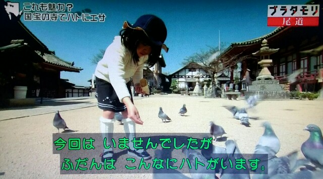 f:id:morifumikirikita319:20170520211920j:image