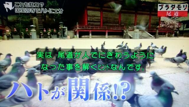 f:id:morifumikirikita319:20170520211927j:image