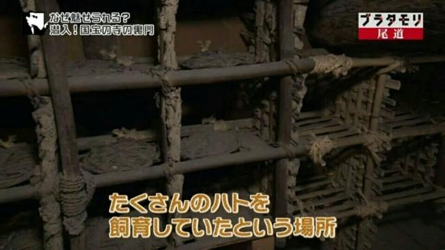 f:id:morifumikirikita319:20170520212811j:image
