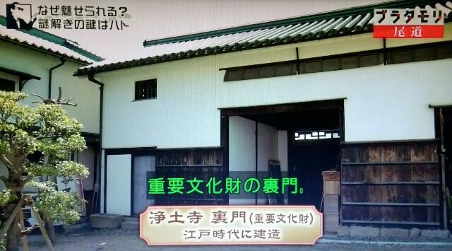 f:id:morifumikirikita319:20170520212913j:image