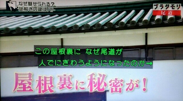 f:id:morifumikirikita319:20170520212926j:image