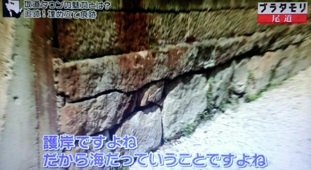 f:id:morifumikirikita319:20170520233357j:image