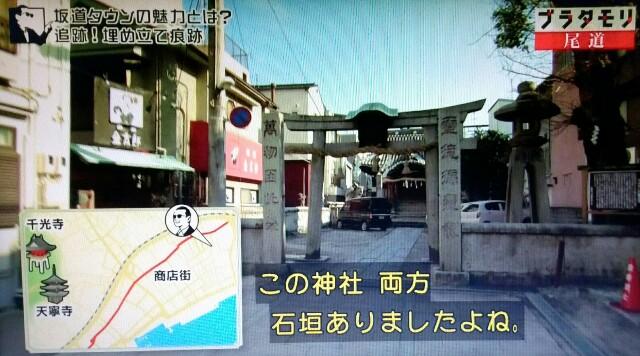 f:id:morifumikirikita319:20170520234655j:image