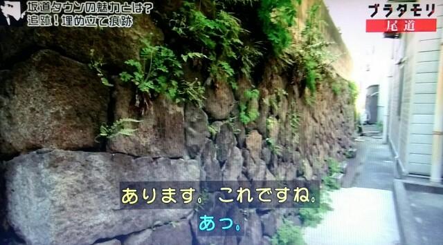 f:id:morifumikirikita319:20170520234744j:image