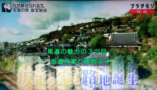 f:id:morifumikirikita319:20170521001552j:image