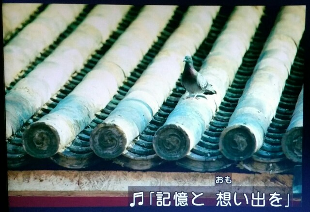 f:id:morifumikirikita319:20170521002239j:image