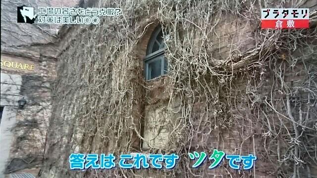 f:id:morifumikirikita319:20170604081230j:image