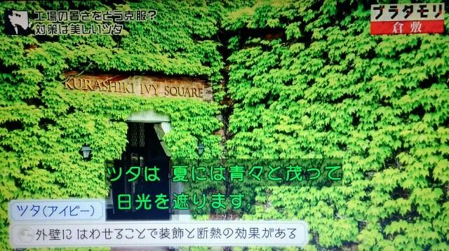 f:id:morifumikirikita319:20170604081242j:image