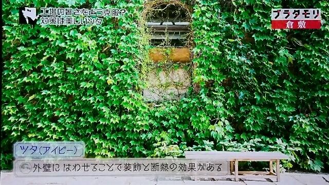 f:id:morifumikirikita319:20170604081253j:image