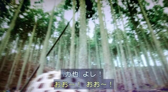 f:id:morifumikirikita319:20170610143010j:image