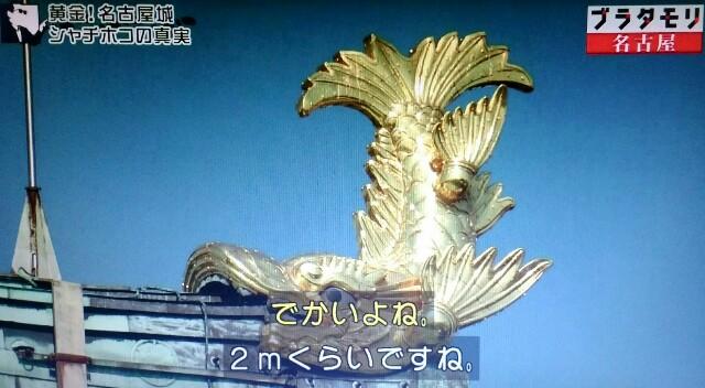 f:id:morifumikirikita319:20170610213614j:image