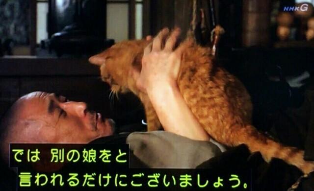 f:id:morifumikirikita319:20170619104248j:image
