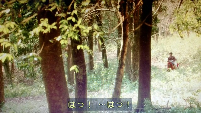 f:id:morifumikirikita319:20170619125153j:image