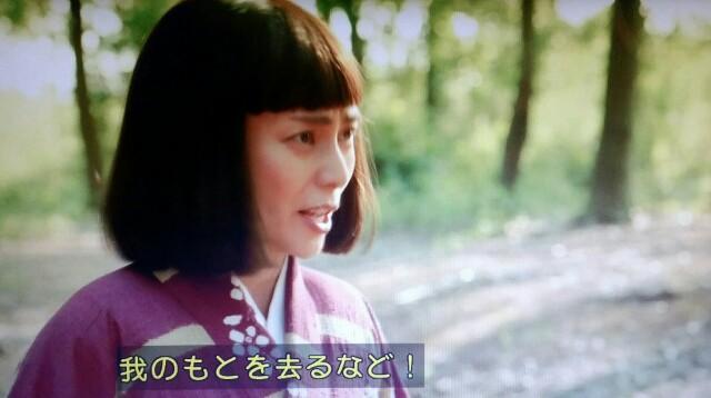 f:id:morifumikirikita319:20170619125624j:image