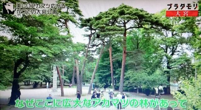 f:id:morifumikirikita319:20170702144804j:image