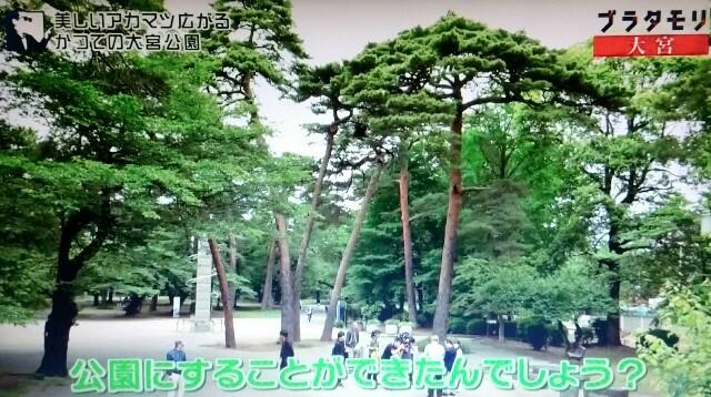 f:id:morifumikirikita319:20170702144817j:image