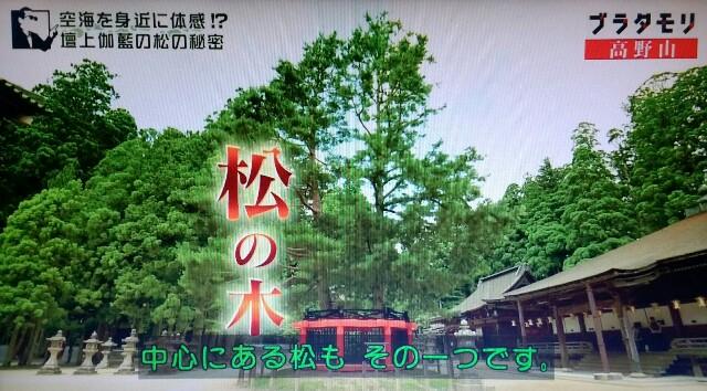 f:id:morifumikirikita319:20170910135008j:image