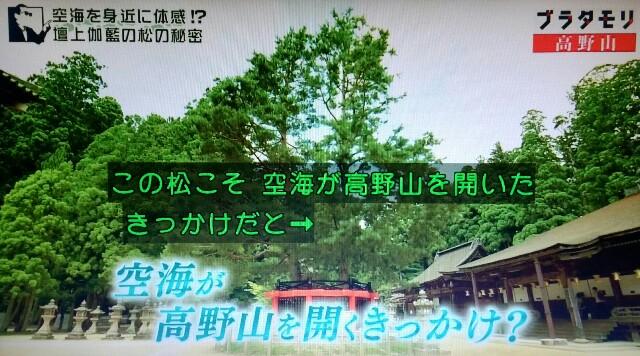 f:id:morifumikirikita319:20170910135028j:image