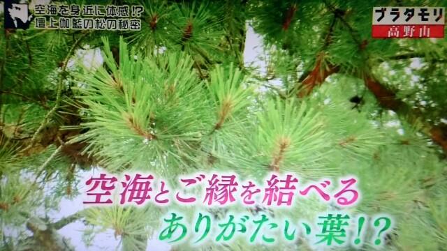 f:id:morifumikirikita319:20170910141300j:image