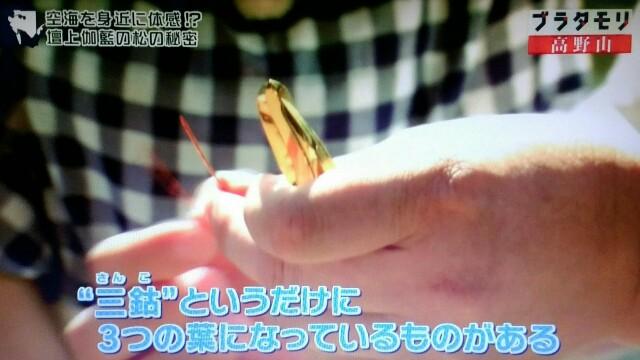 f:id:morifumikirikita319:20170910141317j:image