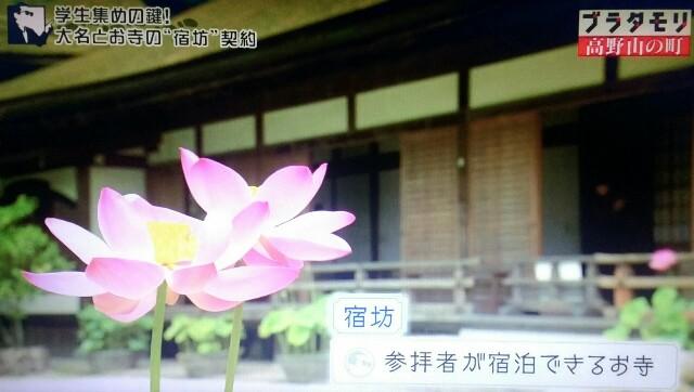 f:id:morifumikirikita319:20170924134306j:image