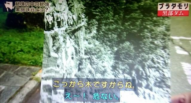 f:id:morifumikirikita319:20171007235525j:image