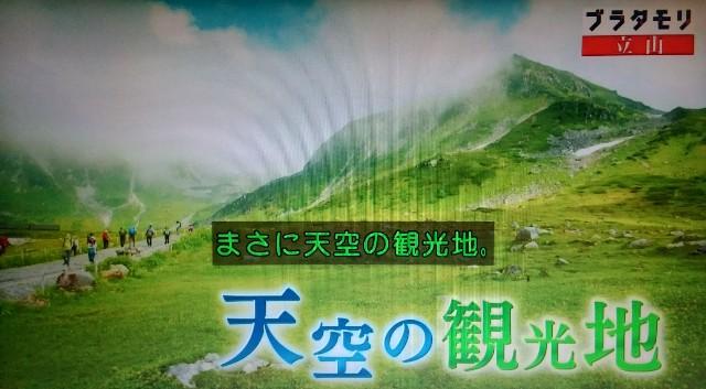 f:id:morifumikirikita319:20171021213832j:image